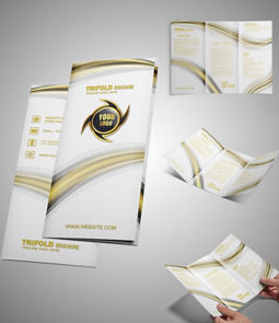 Tri Fold Brochure2 1 - Brochure Design