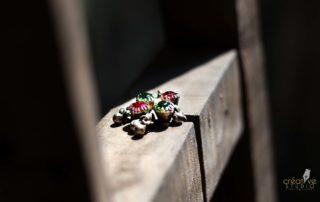 IMG 0119 - Jewellery
